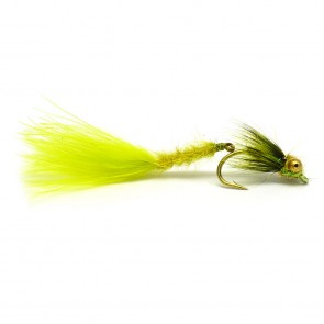 ND Wiggle Tail Olive