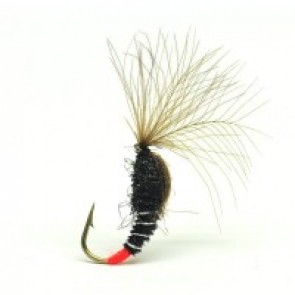 Black And Red CDC Emerger