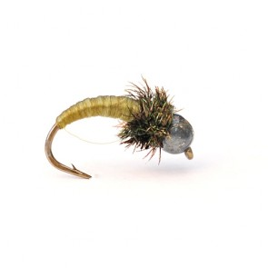 Curved Caddis Tungsten Nymph (olive)
