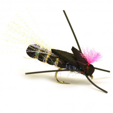 MK Black Cicada