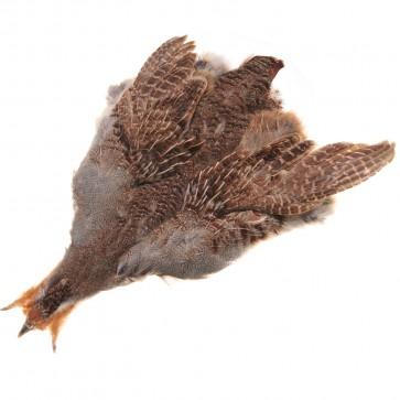 Partridge skin (supreme quality)