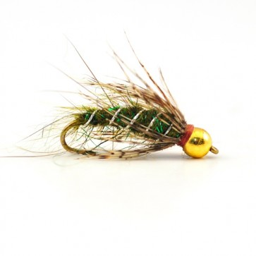 RPs Olive Tungsten Pupa