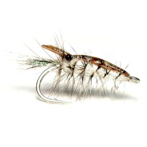 Brown and Pearl Featherback Shrimp