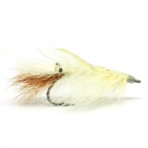 RPs Epoxy Back Shrimp White