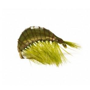 Palmérs Märla Olive