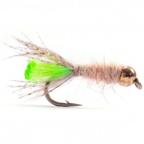 Peeping Caddis Tungsten Nymf