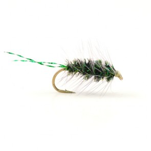 Sparkling Griffith Gnat