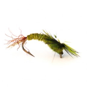 Sprouts BWO