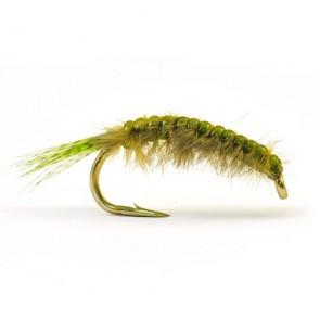 Strutsherl Märla Olive
