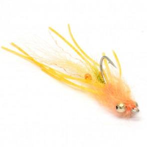 Veverka's Manti Shrimp