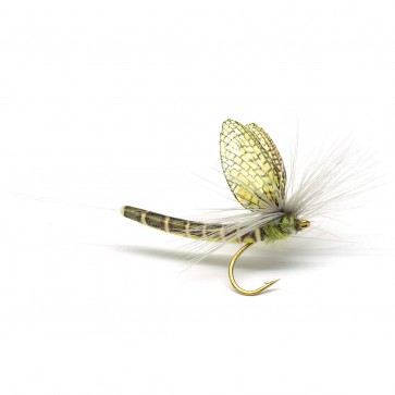 Extended Body Mayfly Lt Olive