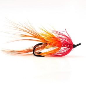 Faughan Shrimp