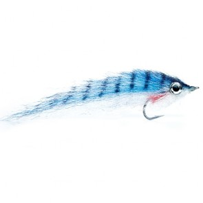 RPs Mackerel