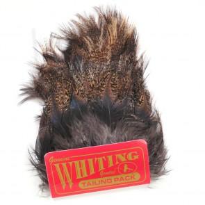 Whiting Coq de Leon Tailing Pack Dark Pardo