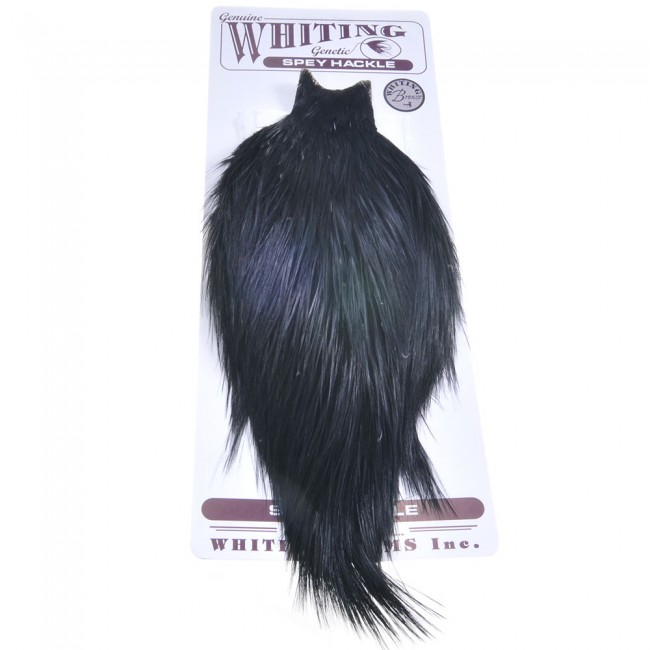 WHITING SPEY CAPE  Bronce Grade BLACK SPEY CAPE bronce BLACK