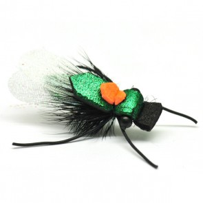 Cartys Cicada Black