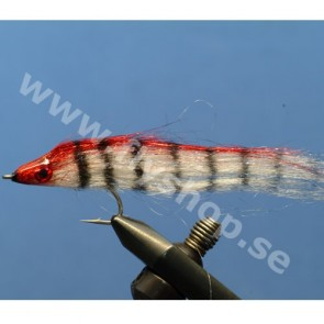 Striped Pike Fly