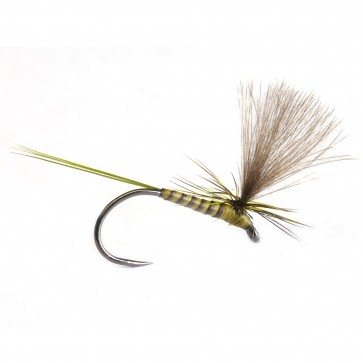 Quill & CDC Parachute Olive