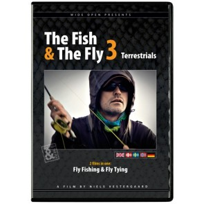 The Fish & The Fly 3 Terrestrials