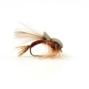 Mayfly Emerger Rust